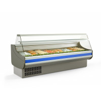 Fischkühltheke Profi 25x9 - gerades Frontglas